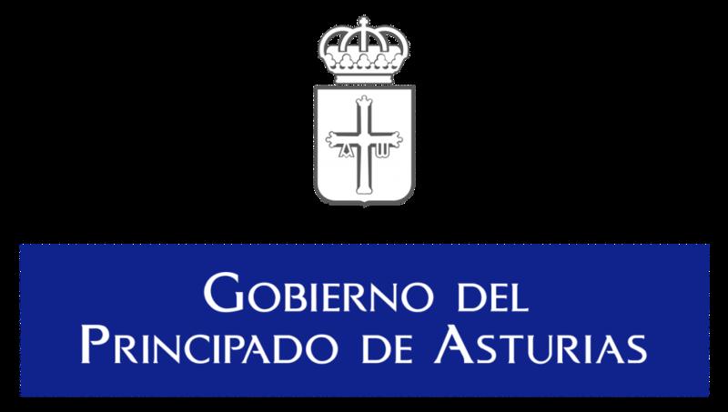 Principado de Asturias modelo 046