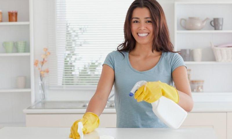 Modelo contrato empleada de hogar por horas