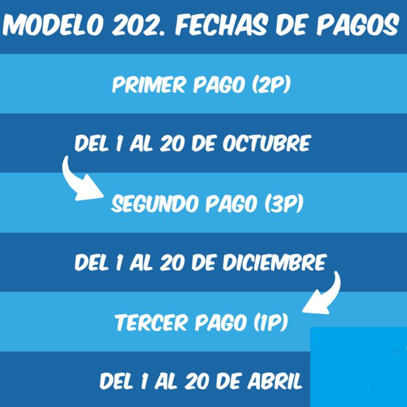 Modelo 202 España 7