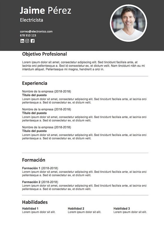 Modelo Curriculum Vitae 2
