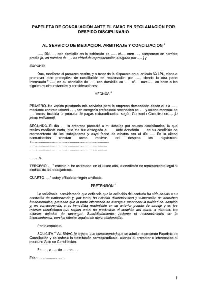 documento del Modelo papeleta de conciliación segunda parte