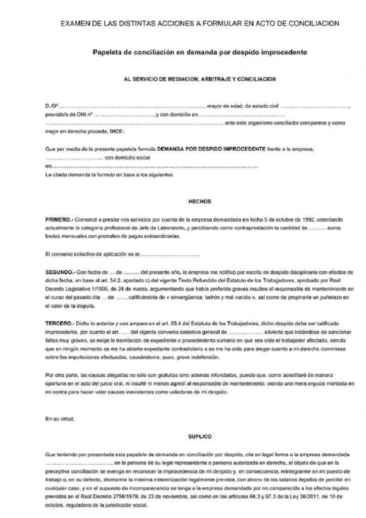 documento del Modelo papeleta de conciliación primera parte