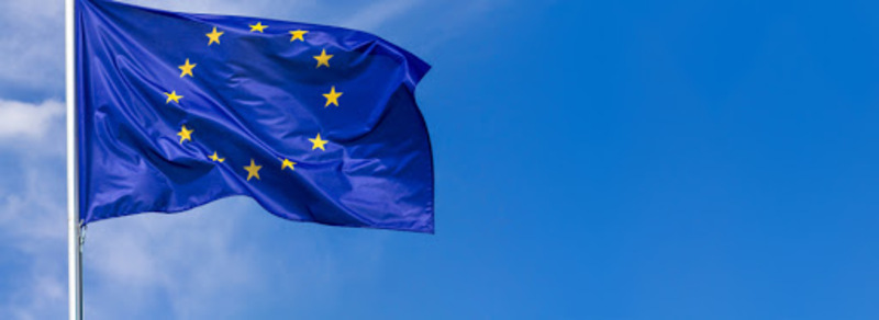 Curriculum Union Europea